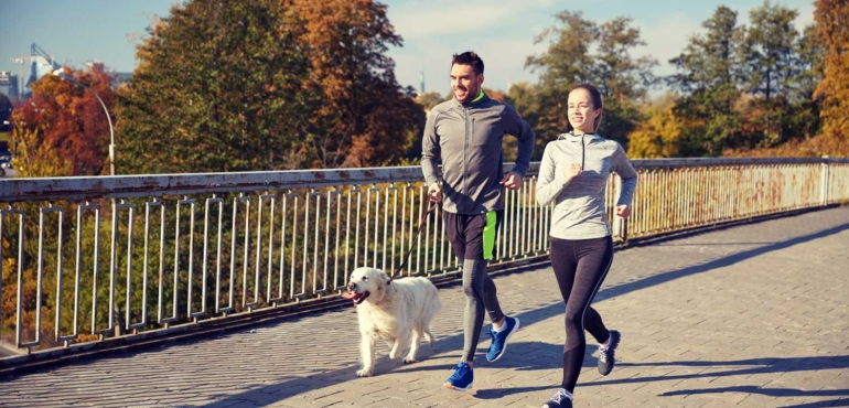 Tips for Safely Running with Your Dog